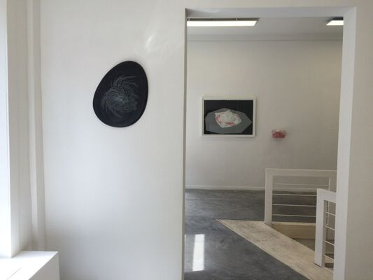 THE BLURRED LINE, installation view