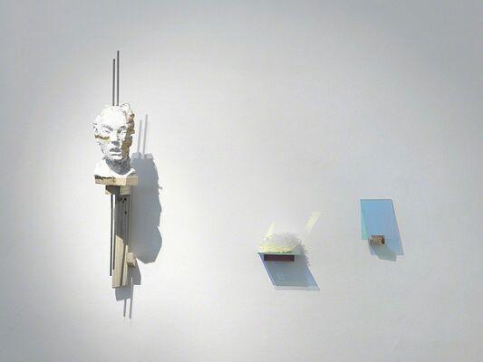 WIM BOTHA, installation view