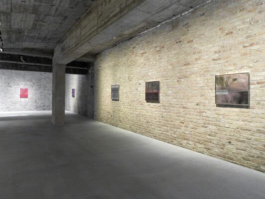 Johannes Wohnseifer: Honey and Money, installation view