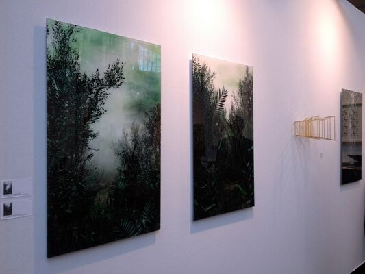 The Flat - Massimo Carasi at YIA ART FAIR #7 - 2016 (Paris), installation view