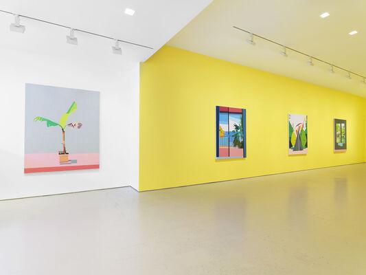 Guy Yanai, installation view