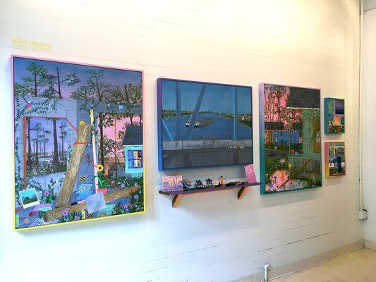 Slow Dreamz, installation view