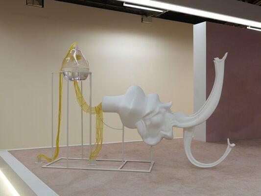 Marguerite Humeau: FOXP2, installation view
