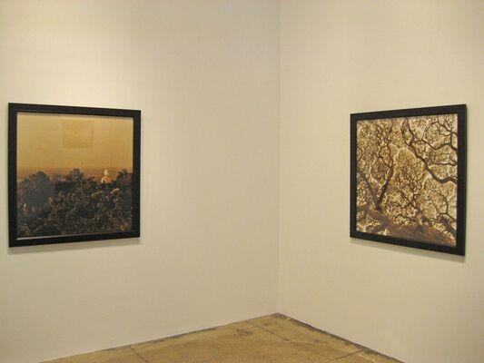 Digital Exhibition - Rena Bass Forman, installation view