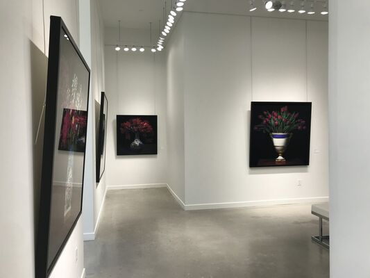 T.M. Glass, installation view