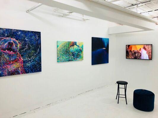 Iris Scott: The Door is Ajar, Mind the Cat, installation view