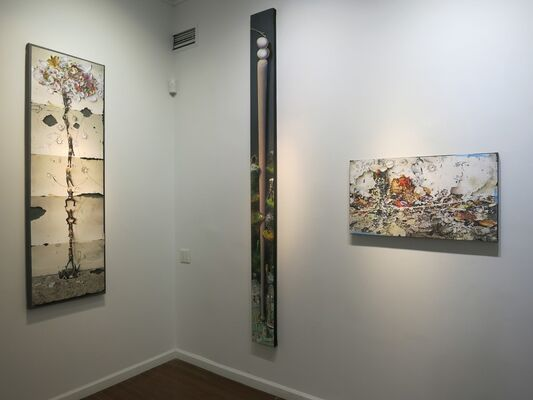 Gerry Bergstein, (Un)timely Entanglements, installation view