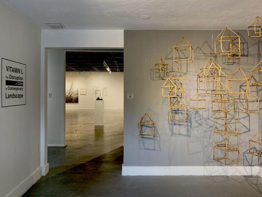 Vitamin L (Landscape): The disruption of color in contemporary landscapes, installation view