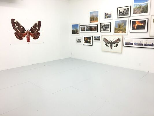 Through a Dirty Window, installation view