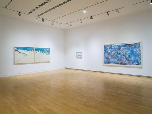 Shared Space: A New Era, installation view