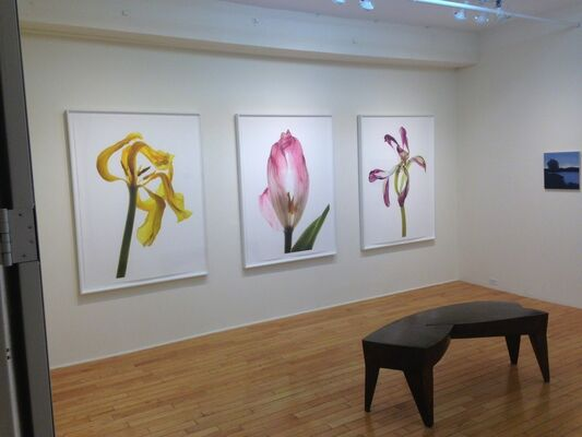 Select 3, installation view