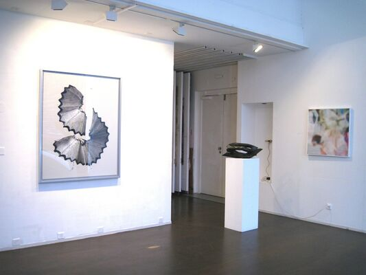Selection, installation view