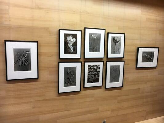 Lucien Clergue - Poésie en noir et blanc, installation view