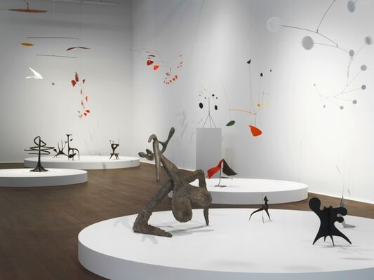 Transparence: Calder / Picabia, installation view