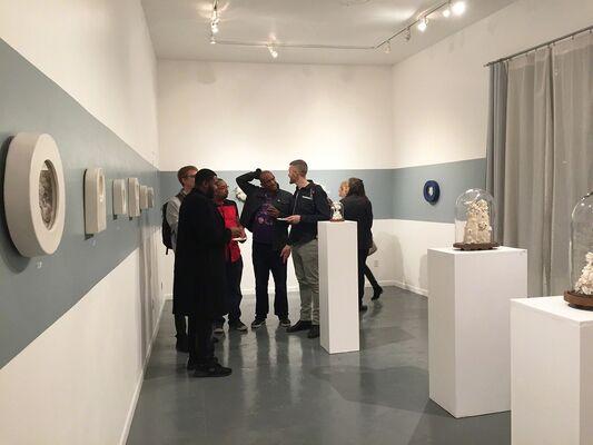 Malia Landis & Wesley T. Wright: Natural Paradox, installation view