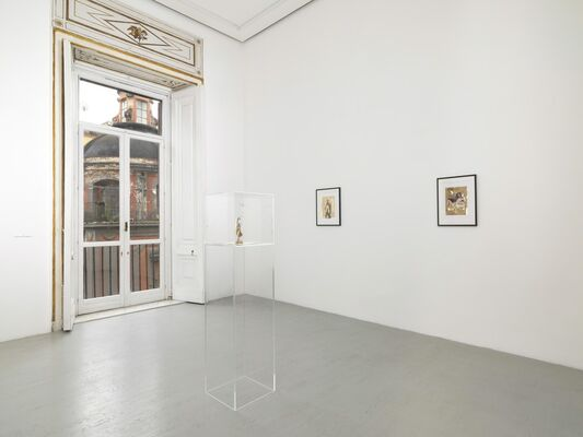 Giulio Paolini, Rinascita di Venere, installation view
