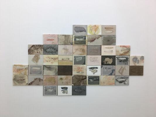 "Shiho Yamamoto ""Organic"", installation view"