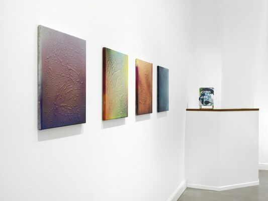 LIQA', installation view