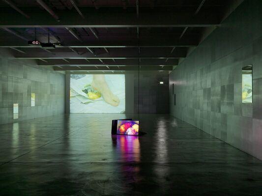 DOUGLAS GORDON, I Had Nowhere To Go, installation view