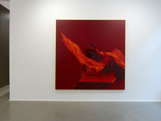 Daniel Lergon | Crimson, installation view