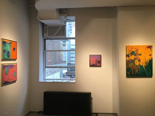 SYMBIOTIC: FORM AND COLOR, installation view