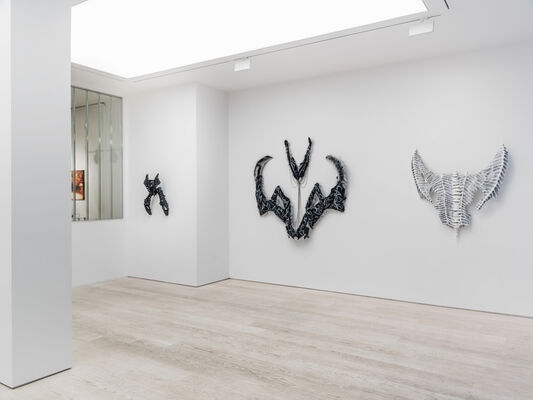 Yngvild Saeter - Butterfly House, installation view