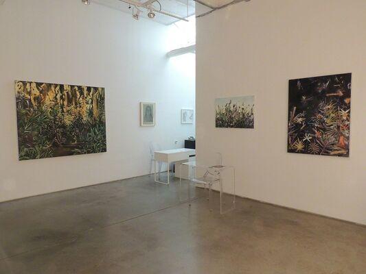 Summer Collective, installation view