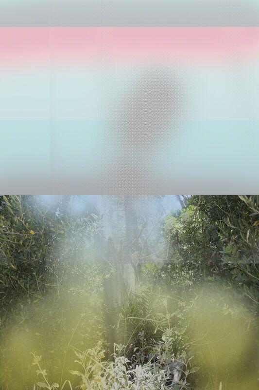 Andrey Bogush, 'Proposal for garden, pink and pattern (carpet)', 2016, Textile Arts, Print on carpet, Osnova Gallery