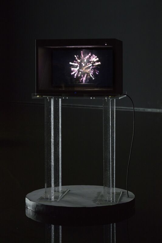 Cécile B. Evans, 'Handy if you're learning to fly II', 2016, Mixed Media, Custom-built holocube, assorted miniatures, HD video, cellophane, plexiglass stands, corn syrup, lacquer, C-type print, book, Barbara Seiler
