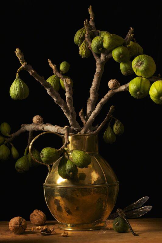Paulette Tavormina, 'Figs, after G.F.', 2009, Photography, Archival digital pigment print, Robert Klein Gallery