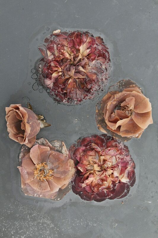 Mary Kocol, 'Circle of Roses (from the Ghost Garden Series)', 2013, Photography, Archival inkjet print, Gallery NAGA