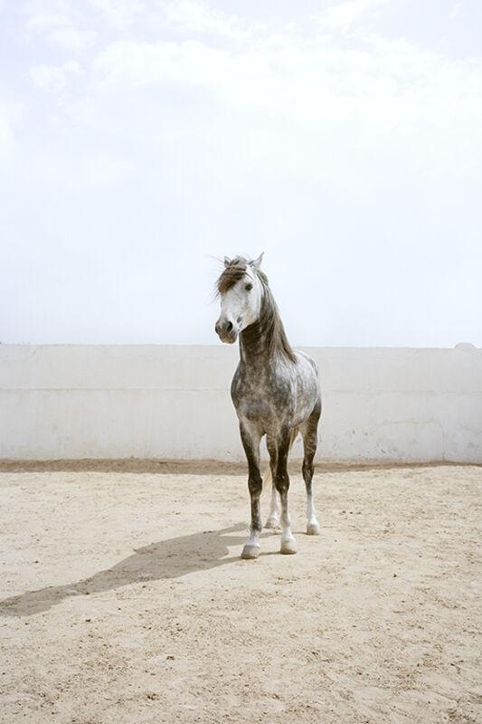 Jitka Hanzlová, 'Untitled', 2011, Photography, Archival Pigment Print, Yancey Richardson Gallery