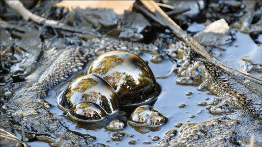 Leslie Thornton, 'SNAP: Oil/Air/Water', 2013