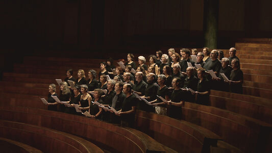 Marco Godoy, ' Claiming the Echo performed by the Solfףnica Choir, singlechannel HD video, 5 min 25 sec, looped Courtesy of the artist', 2012