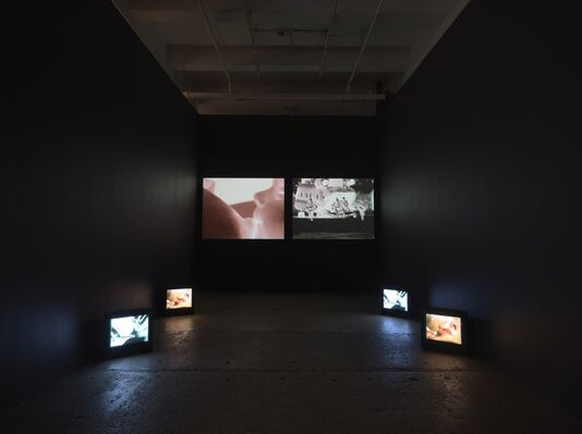 Further Evidence - Exhibit B, installation view