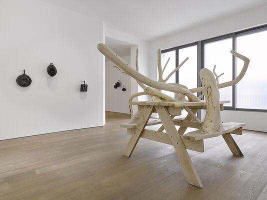 Hugh Hayden: American Food, installation view