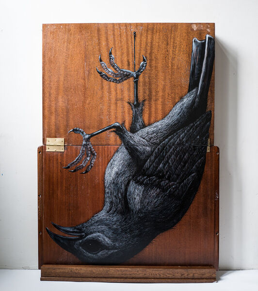 ROA, 'FRINGILLIDAE MMXVIII (Finch)', 2018