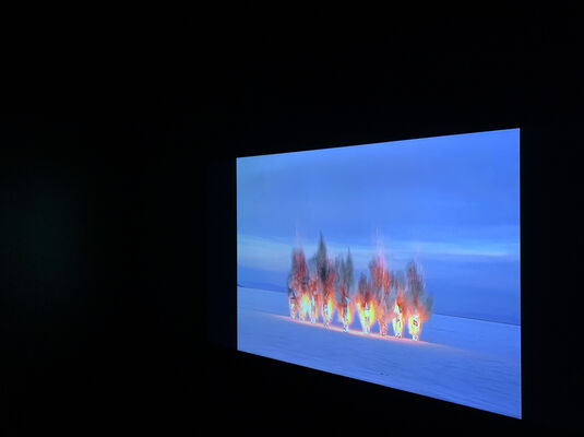 Andréa Stanislav: Blow Away, installation view