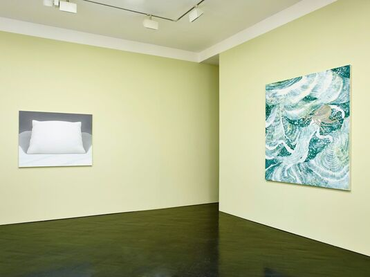 Horizon That Appears Out of The Sleepy Woods, installation view