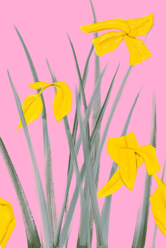 Alex Katz, 'Yellow Flags 3', 2020, Print, Archival pigment inks on Crane Museo Max 365 gsm paper, Artsy x Tate Ward