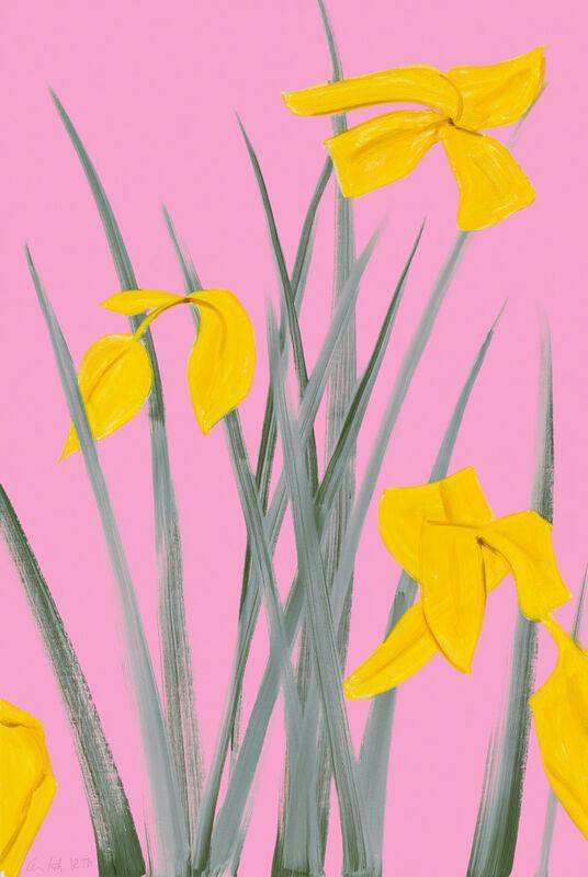 Alex Katz, 'Yellow Flags 3', 2020, Print, Archival pigment print, Vogtle Contemporary