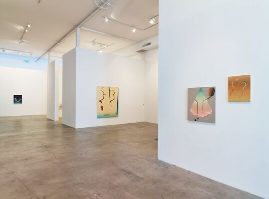 Damien Flood: Shape of Things, installation view