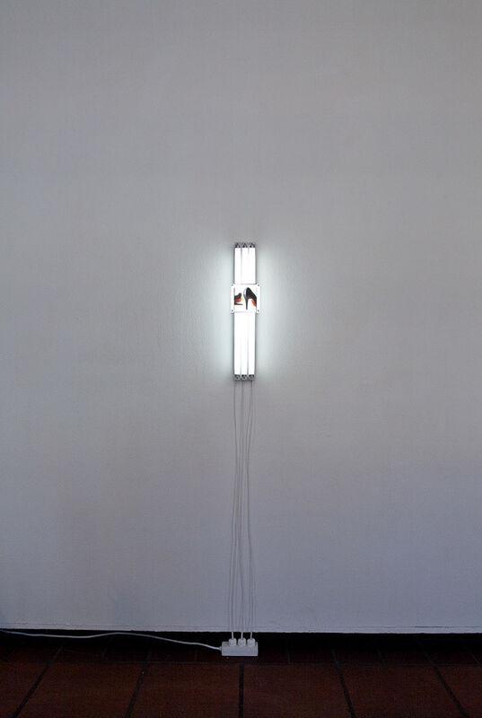 Magdalena Bichler, 'Jules', 2013, Photography, Large Format Dia Positive, ƒƒ