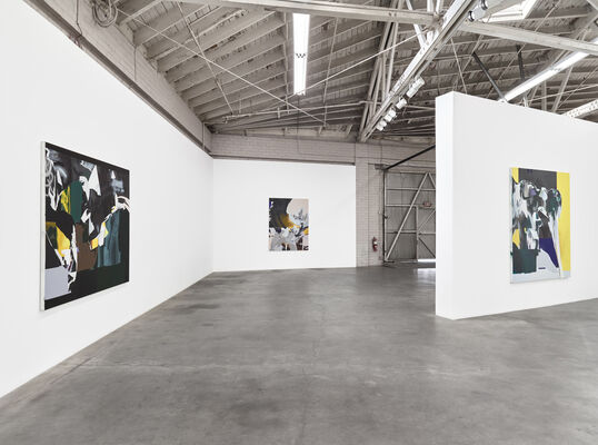Han Bing: territory to be tamed ------- if not later then when, installation view