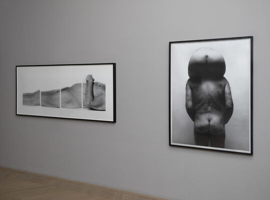 A Body of Work—John Coplans, installation view