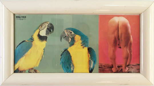 "Cary Leibowitz (""Candy Ass""), 'Bird Talk (and butt)', 1989"
