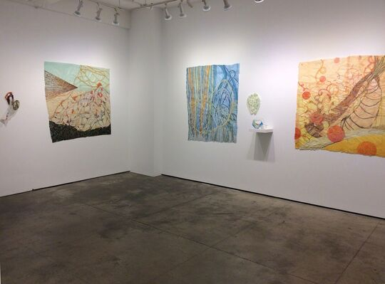 NANCY COHEN: Force - Observations From The Interior, installation view