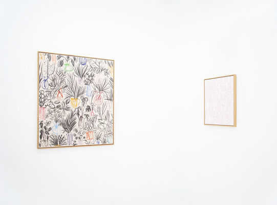 B.D. GRAFT: PLANTED THOUGHTS, installation view