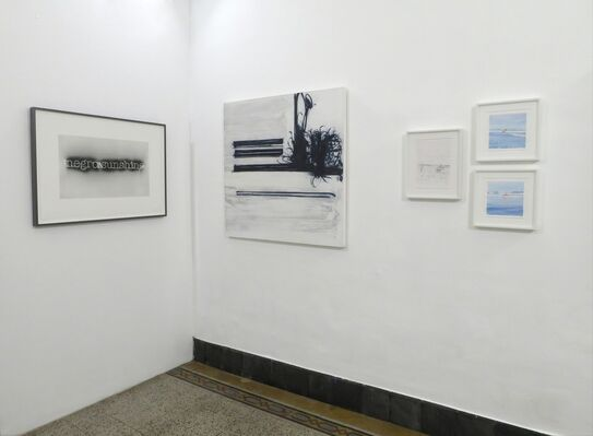 Black and White With a Splash, installation view