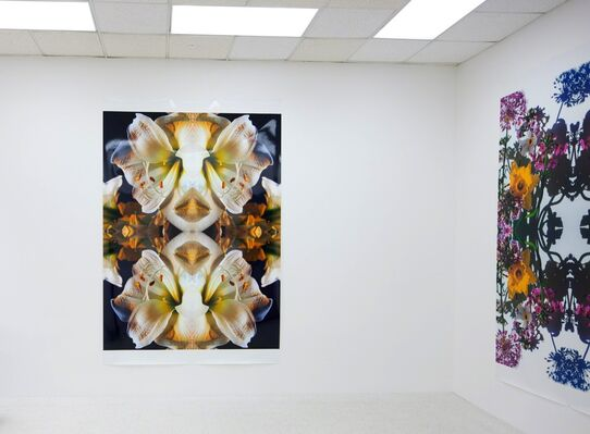 Todd Eberle FLOWERS (for Richard), installation view